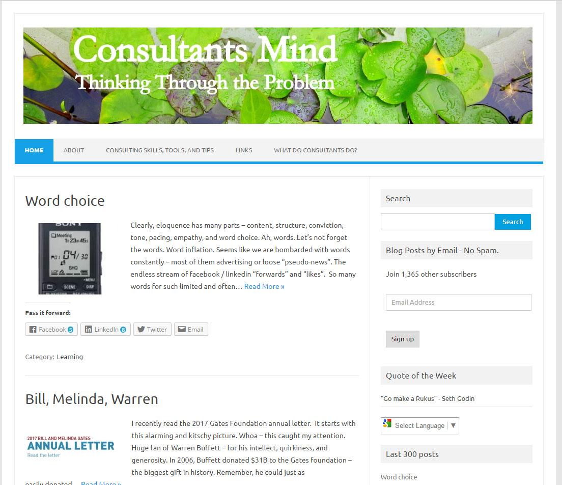 Consultant's Mind