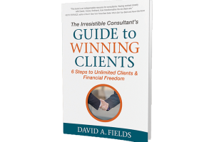 7 Things I Learned From The Irresistible Consultant's Guide To Winning Clients by David Fields