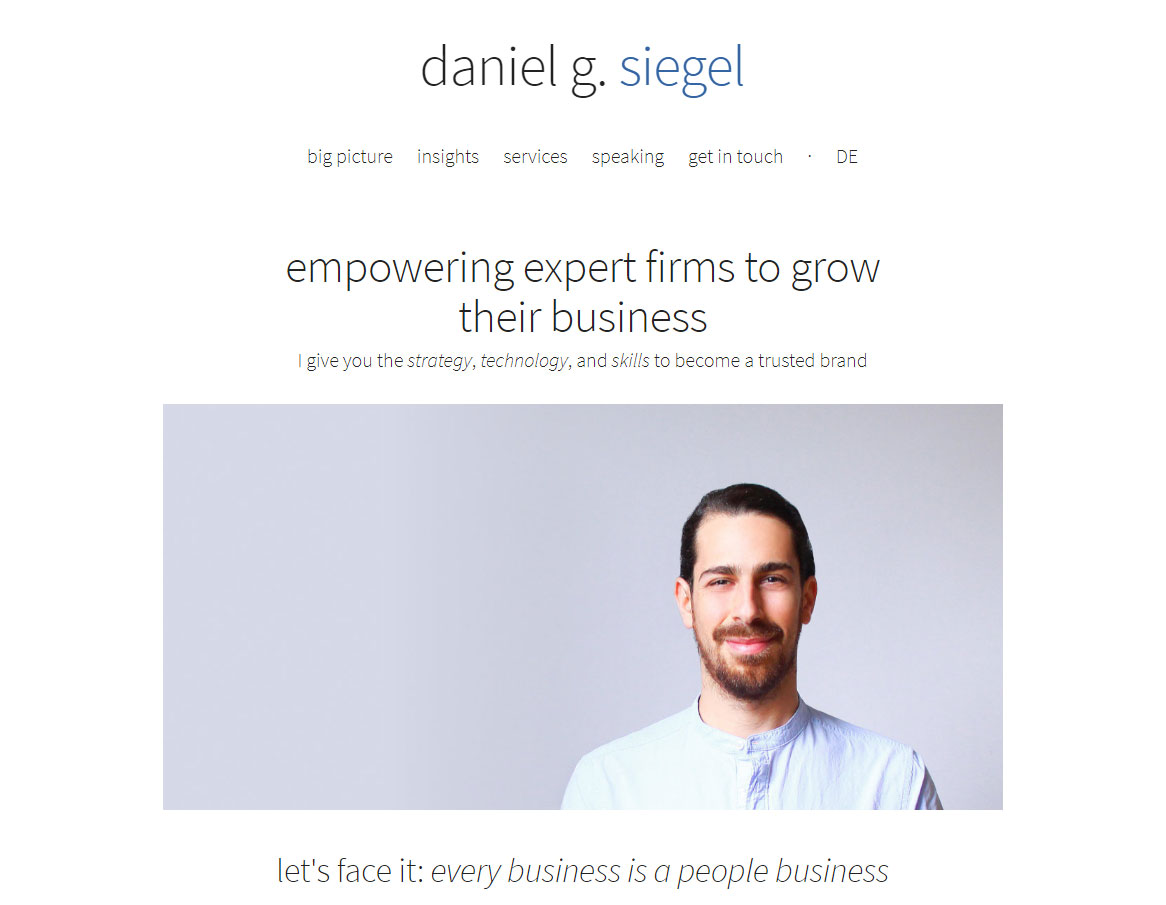 daniel siegel consulting website